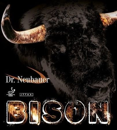 antytopspin DR NEUBAUER Bison